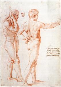 Abb. 3: Raffael, Zwei Männerakte und eine Kopfstudie
