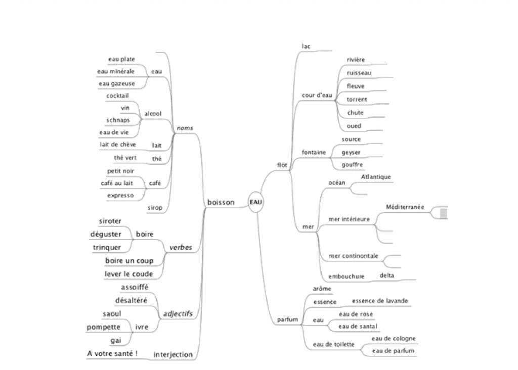 Figure 1: Carte mentale «l'eau»